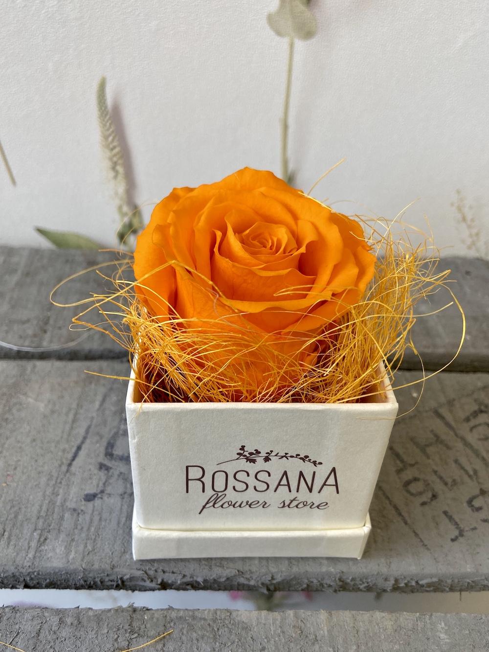 arancioflower box rose stabilizzate florashopping Rossana flower store NovellinoIMG_0472