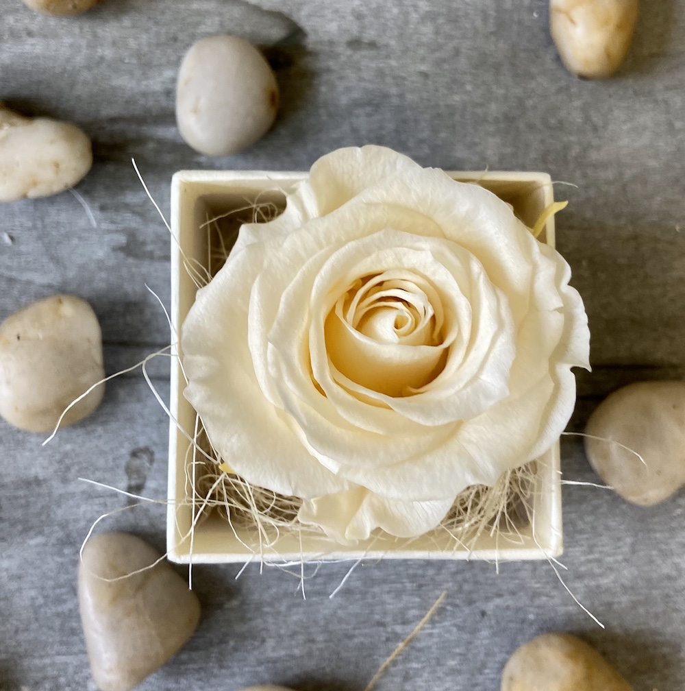 avorio flower box rose stabilizzate florashopping Rossana flower store NovellinoIMG_0724