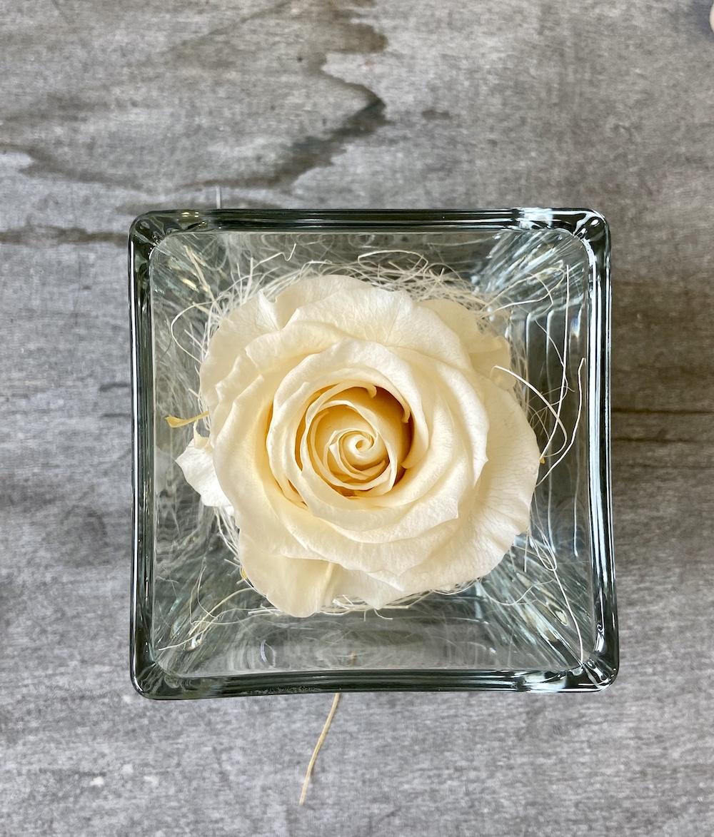 avorio flower box rose stabilizzate florashopping Rossana flower store NovellinoIMG_0735