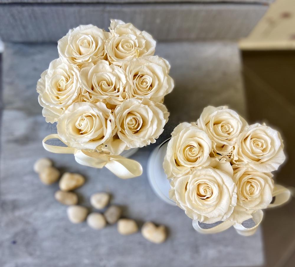 avorio flower box rose stabilizzate florashopping Rossana flower store NovellinoIMG_0756