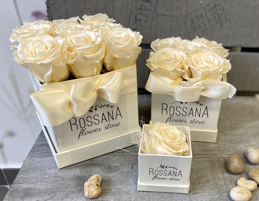 avorio flower box rose stabilizzate florashopping Rossana flower store NovellinoIMG_0774