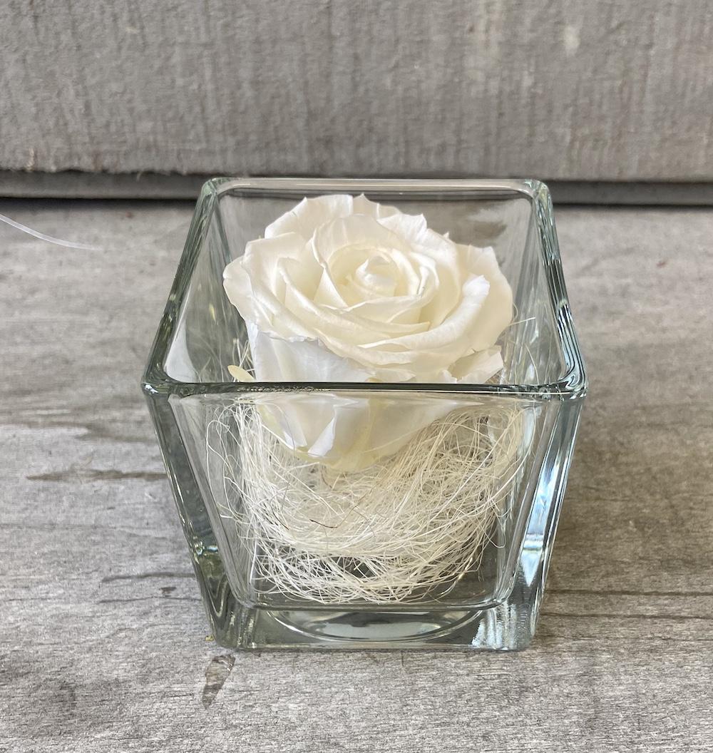 flower box rose stabilizzate bianche florashopping Rossana flower store NovellinoIMG_0801