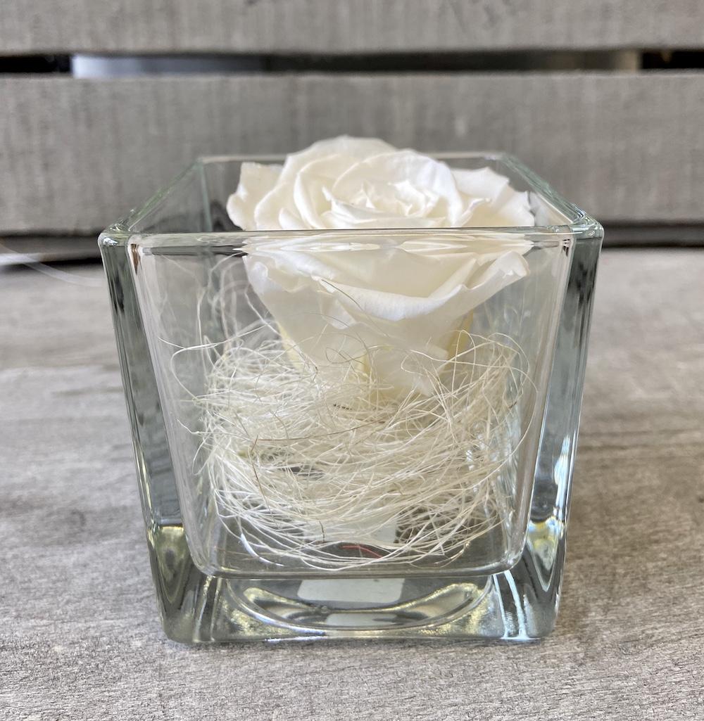 flower box rose stabilizzate bianche florashopping Rossana flower store NovellinoIMG_0804