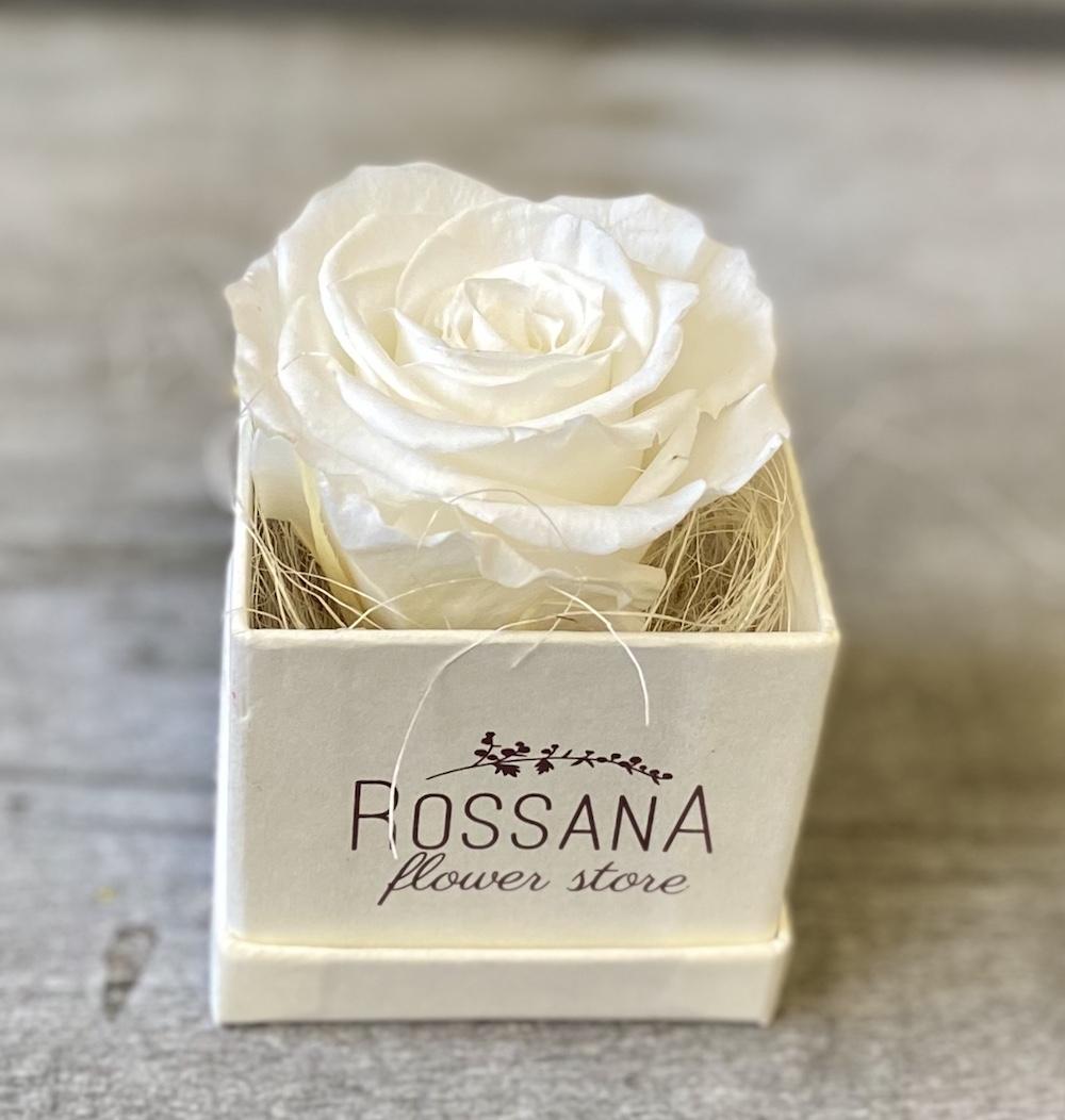 flower box rose stabilizzate bianche florashopping Rossana flower store NovellinoIMG_0808