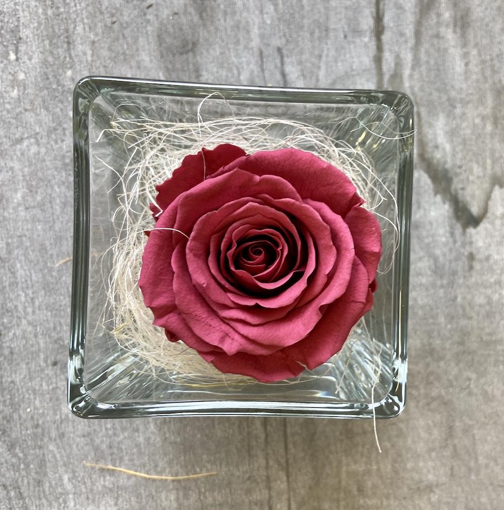 flower box rose stabilizzate cranberry florashopping Rossana flower store NovellinoIMG_0672
