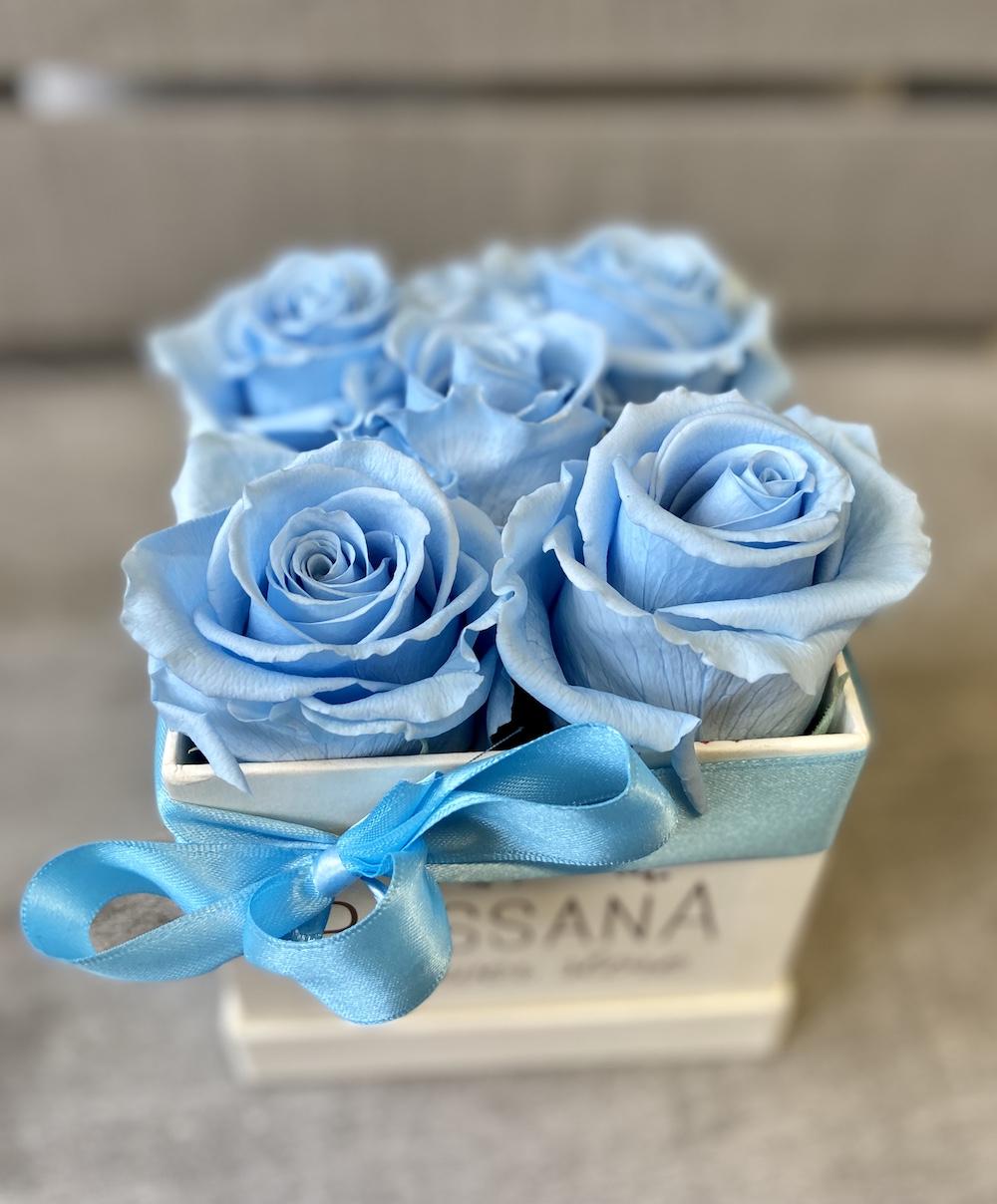 flower box rose stabilizzate florashopping Rossana flower store NovellinoIMG_0834 azzurro