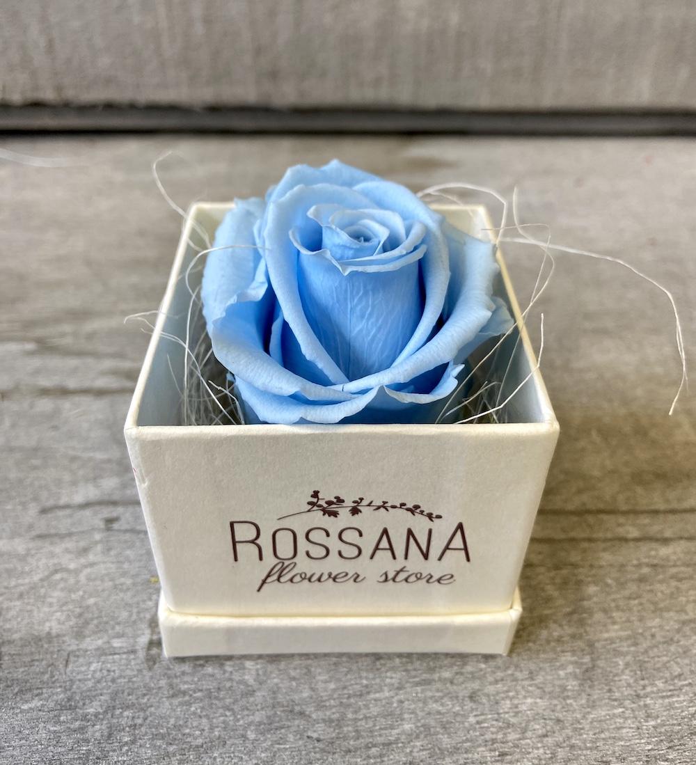 flower box rose stabilizzate florashopping Rossana flower store NovellinoIMG_0846 azzurro