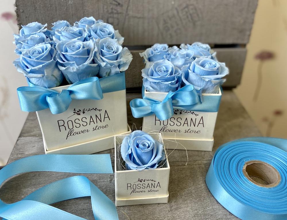 flower box rose stabilizzate florashopping Rossana flower store NovellinoIMG_0852 azzurro