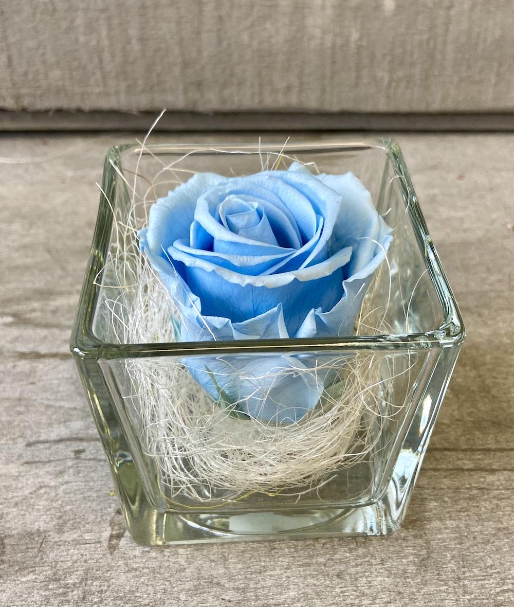 flower box rose stabilizzate florashopping Rossana flower store NovellinoIMG_0856 azzurro
