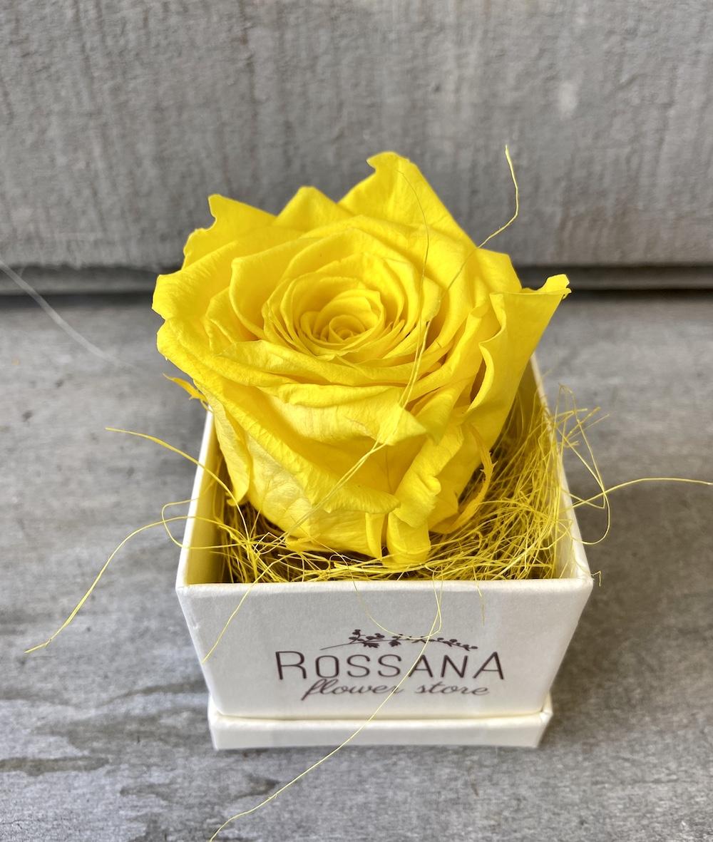 flower box rose stabilizzate gialle florashopping Rossana flower store NovellinoIMG_0485