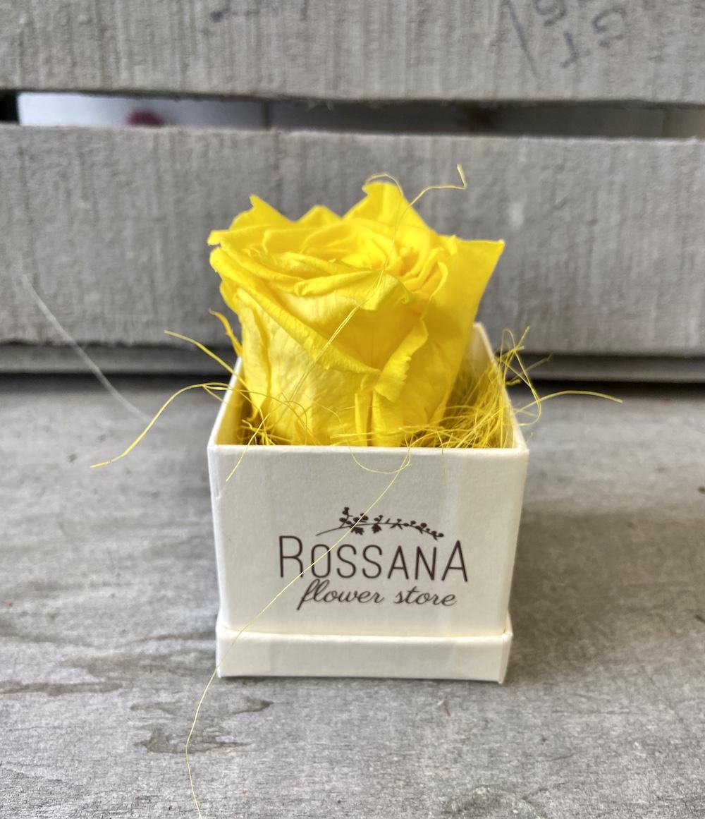 flower box rose stabilizzate gialle florashopping Rossana flower store NovellinoIMG_0486
