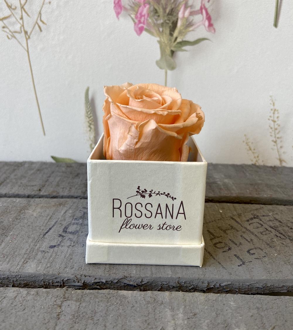 flower box rose stabilizzate pesca florashopping Rossana flower store NovellinoIMG_0262