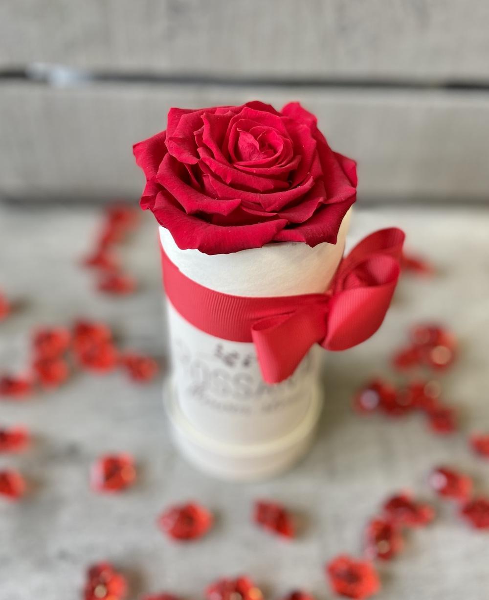 flower box rose stabilizzate rosso florashopping Rossana flower store NovellinoIMG_0579