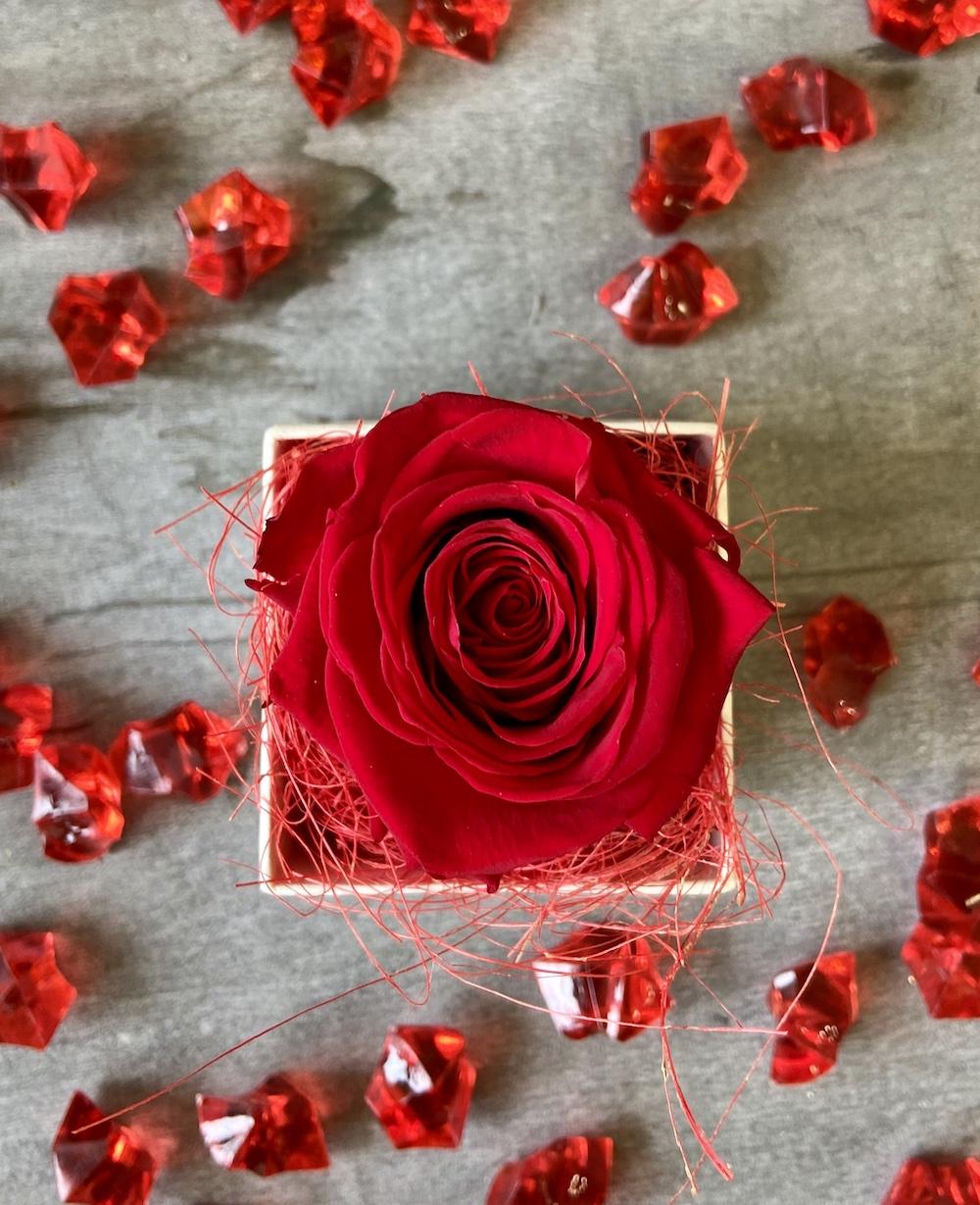 flower box rose stabilizzate rosso florashopping Rossana flower store NovellinoIMG_0589