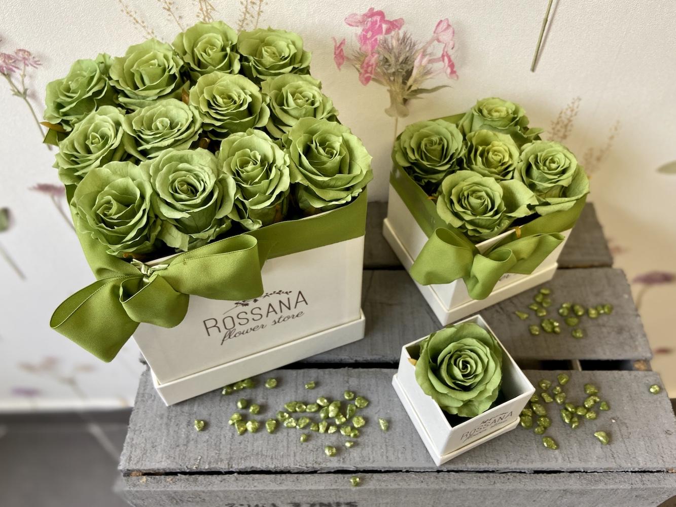 flower box rose stabilizzate verde florashopping Rossana flower store NovellinoIMG_0412
