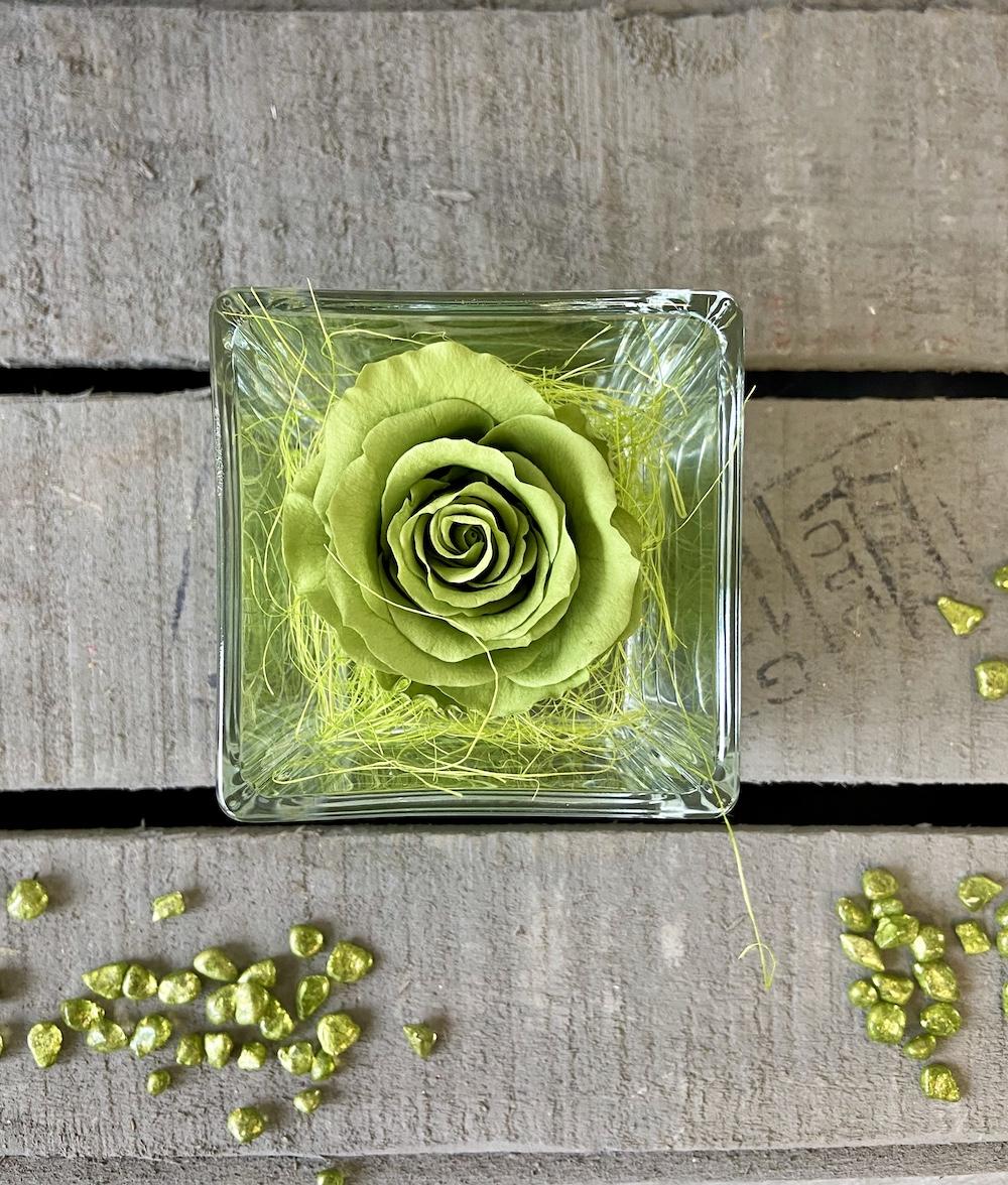 flower box rose stabilizzate verde florashopping Rossana flower store NovellinoIMG_0431