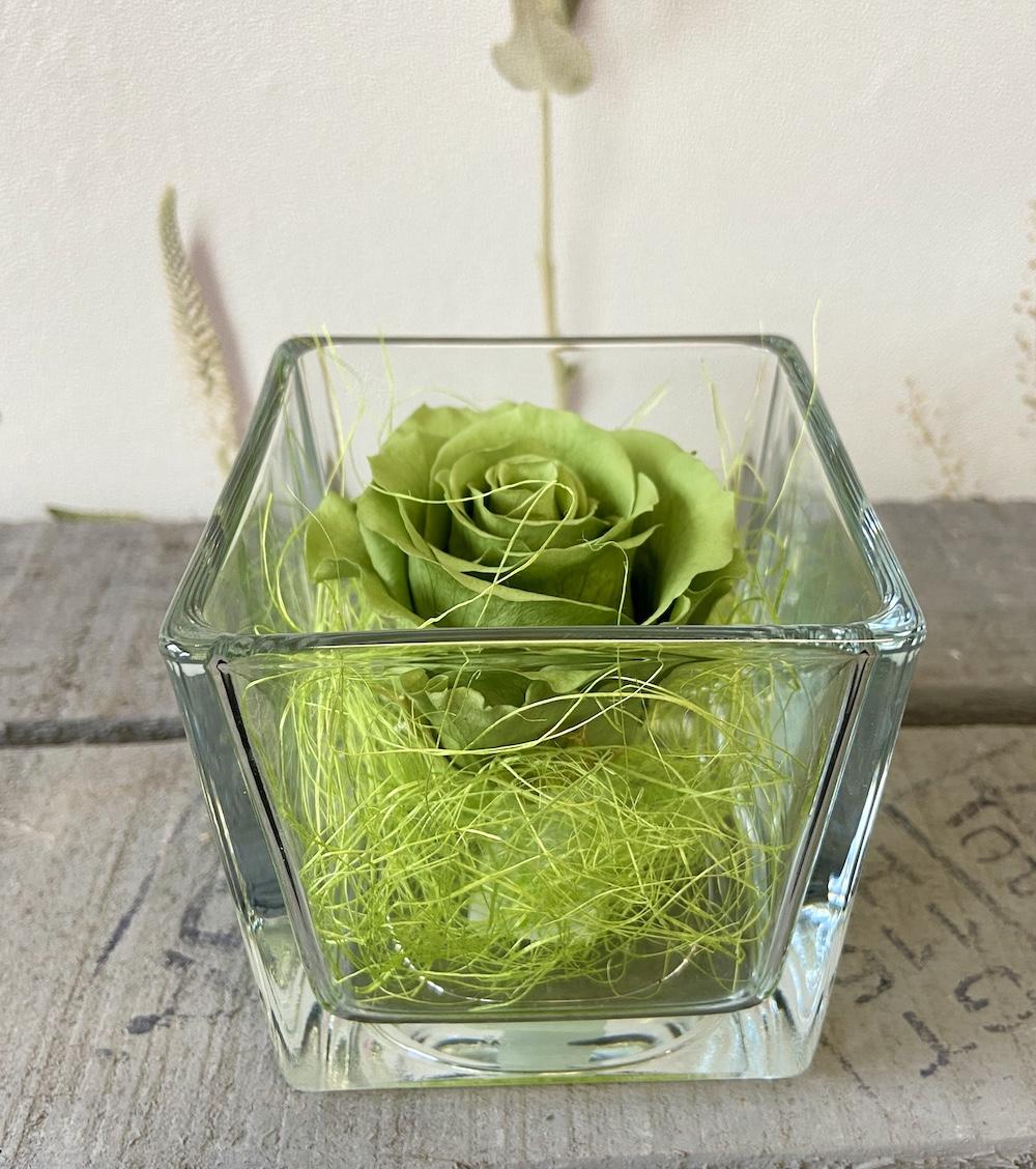 flower box rose stabilizzate verde florashopping Rossana flower store NovellinoIMG_0432