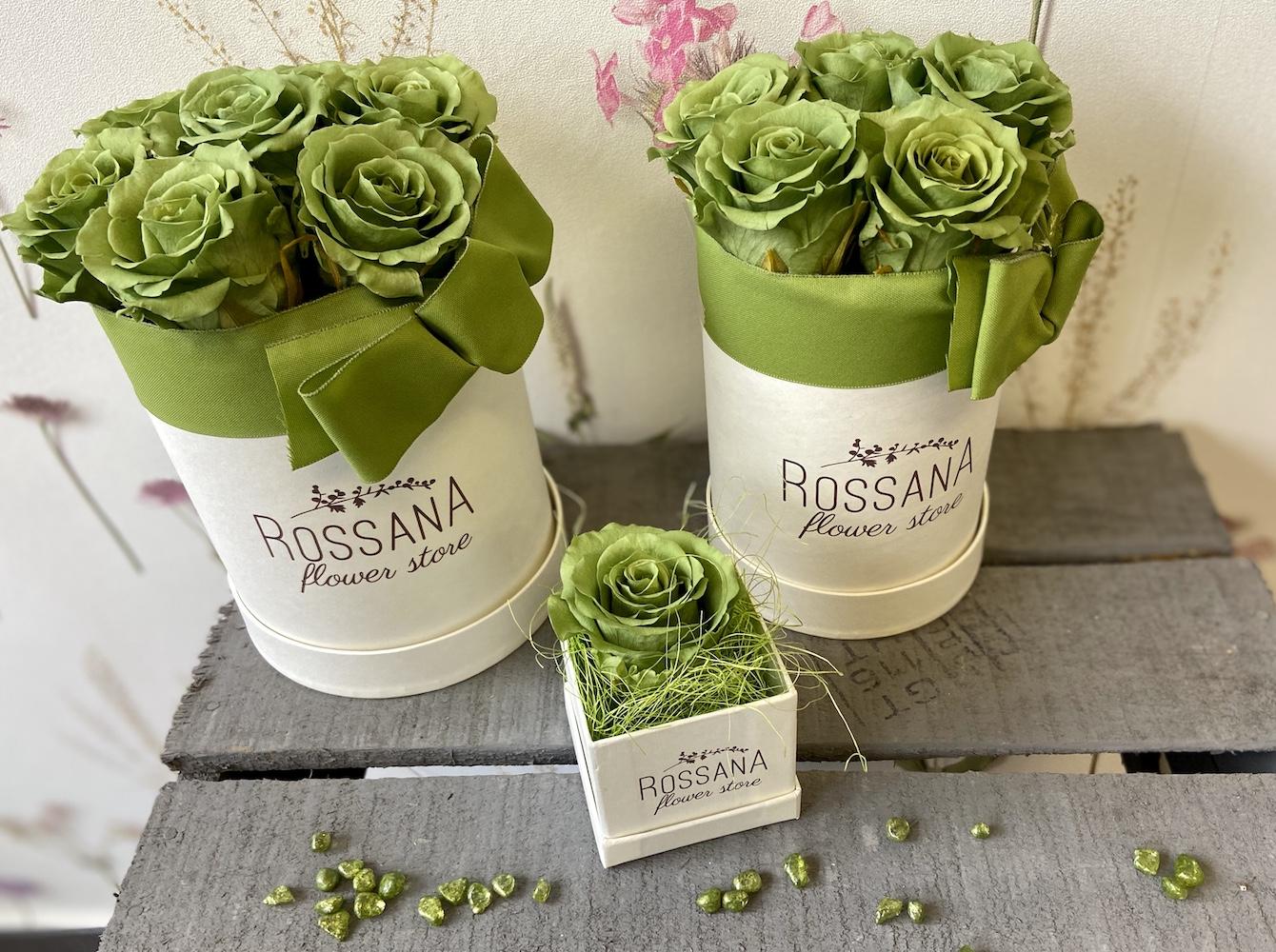 flower box rose stabilizzate verde florashopping Rossana flower store NovellinoIMG_0450