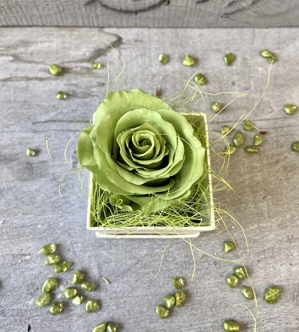 flower box rose stabilizzate verde florashopping Rossana flower store NovellinoIMG_0451