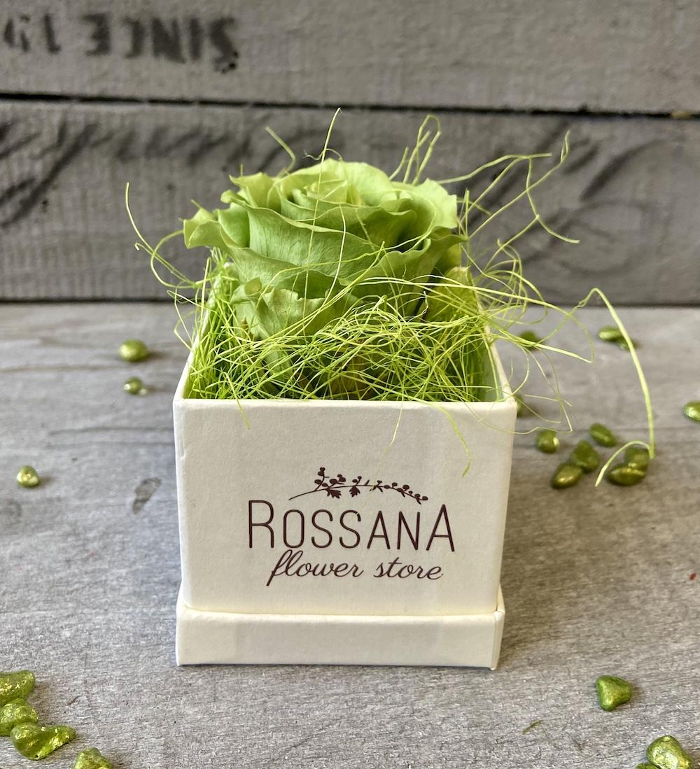 flower box rose stabilizzate verde florashopping Rossana flower store NovellinoIMG_0452