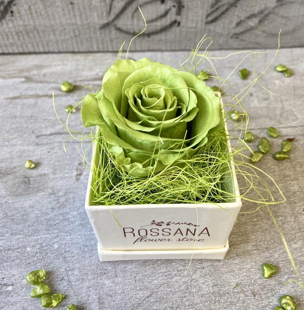 flower box rose stabilizzate verde florashopping Rossana flower store NovellinoIMG_0453